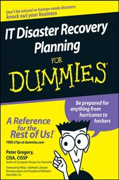 it disaster recovery planning for dummies pdf