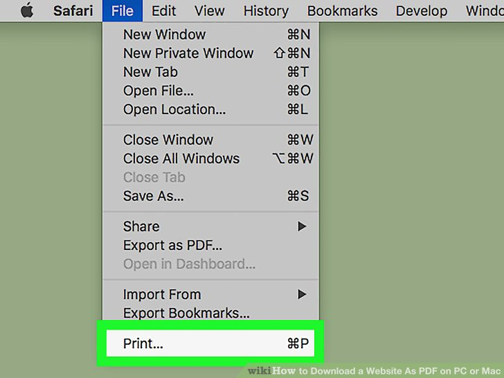 how to download pdf from website on mac