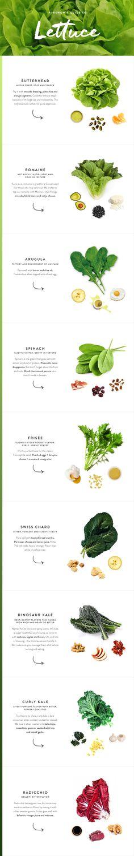 lettuce varieties guide
